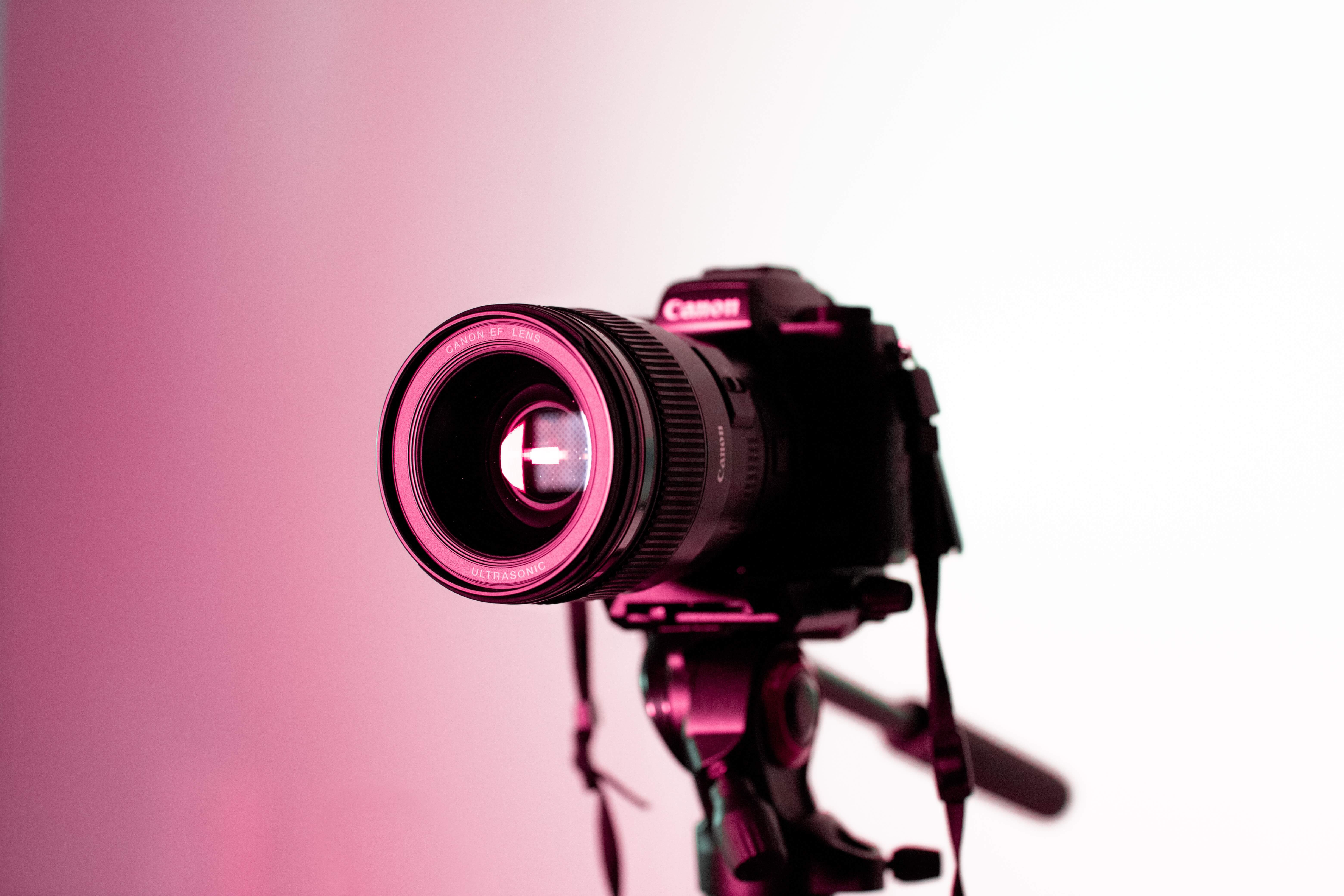 Royalty-Free Images: A Guide